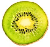 Section of kiwi isolated Royalty Free Stock Photography