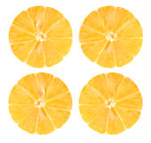 Section lemon with details on white background Stock Images