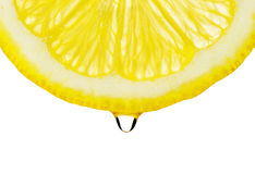Section lemon with drop Royalty Free Stock Images
