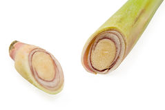 Section of lemongrass Stock Photo