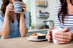 Section médiane des amis féminins tenant des tasses de café Image libre de droits
