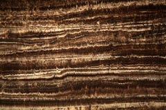 Section mince d'une stalagmite Images libres de droits