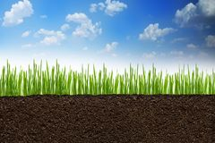 Section or profile of natural soil with green grass under the clear blue sky Royalty Free Stock Image