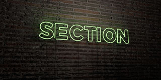 SECTION -Realistic Neon Sign on Brick Wall background - 3D rendered royalty free stock image Royalty Free Stock Photo