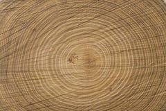 Section transversale d'arbre images stock