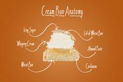 Section transversale d'un petit pain crème Photos libres de droits