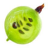 Section transversale de fruit vert de groseille à maquereau, instruction-macro image libre de droits