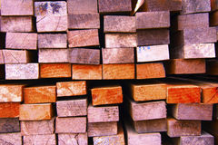 section transversale de la pile en bois Photos libres de droits