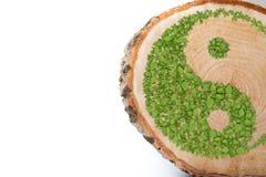 Section transversale de tronc d'arbre avec le symbole de yang de Ying Photo libre de droits