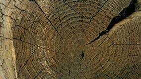 Section transversale du tronc d'arbre d'une vieille maison en bois image stock