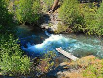 Aqua Bush Water. A section of Whychus Creek flowing through bushes in the Cascade Range - near Sisters, OR Royalty Free Stock Photo