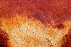 Sectional area wood texture and cracks in wood for background Stock Photography
