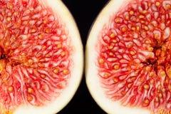 Sectioned owoc makro- świeża figa Fotografia Royalty Free