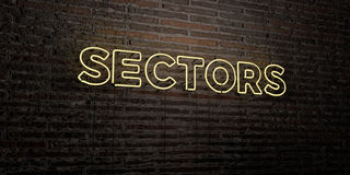 SECTORS -Realistic Neon Sign on Brick Wall background - 3D rendered royalty free stock image Royalty Free Stock Photo