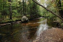Secuencia de Adirondack Fotos de archivo