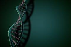 Secuencia de la DNA Imagenes de archivo
