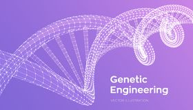 Secuencia de la DNA Malla de la estructura de las moléculas de la DNA de Wireframe Plantilla editable del código de la DNA Cienci Libre Illustration
