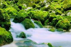Secuencia del agua Foto de archivo libre de regalías