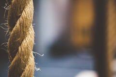 Secuencia del cordón del vínculo de la cuerda Imagen de archivo