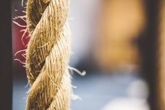 Secuencia del cordón del vínculo de la cuerda Fotos de archivo libres de regalías