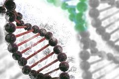 Secuencia del genoma del fondo de la DNA de la hélice de la DNA Fotografía de archivo
