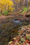 Secuencia del otoño Imagen de archivo libre de regalías