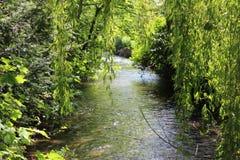 Secuencia del río que fluye Fotografía de archivo