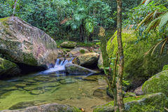 Secuencia tropical fotos de archivo