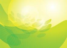 Secuencia verde Foto de archivo libre de regalías