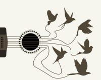 Secuencias de la guitarra del oso de los pájaros Fotos de archivo