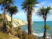 Secuestradores del cabo, Nueva Zelanda Foto de archivo libre de regalías