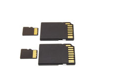 Secure Digital memory cards. On white background Royalty Free Stock Photos