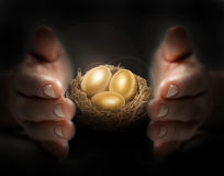 Secure investment. Gold eggs are protected  by hands Stock Photos