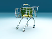 Secure Shopping Stock Photography