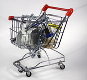Secure shopping cart Stock Image