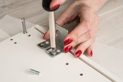 Securing the furniture corner in the depth of the furniture cabi. Net. A woman is holding a screwdriver in her hands Stock Photography