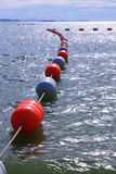 Security bouy. Line of bouy on the sea Royalty Free Stock Images
