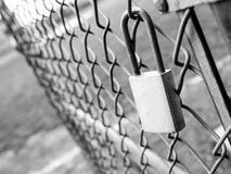 Security breach. Lock hanging on open chain link fence gate.  someone forgot to lock the entrance Royalty Free Stock Photos