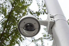 Security cam in a public park Royalty Free Stock Photos
