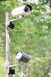 Security camera. Security surveillance camera in the forest royalty free stock photo