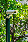 Security Camera in the Garden, CCTV Camera. Security Camera in the Garden, White CCTV Camera Royalty Free Stock Images