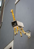 Security Camera with Giraffe Stock Photos
