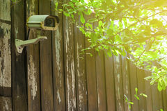 Security CCTV camera with leaves Stock Image