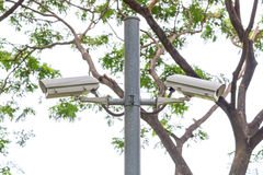 Security CCTV camera and urban video at public park Stock Photos