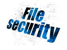 Security concept: File Security on Digital background Royalty Free Stock Photo