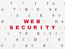 Security concept: Web Security on wall background Royalty Free Stock Photography