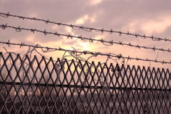 Security fence in winter Royalty Free Stock Photography