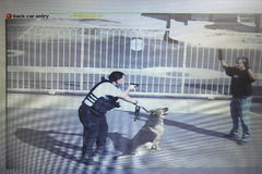 Free Security Guard Aiming Gun At Thief In Parking Lot Stock Photos - 29659753