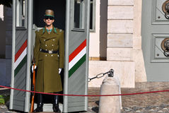 Security guard in front of the Presidental Palace. Budapest, Hungary Royalty Free Stock Photo