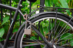 Security lock and chain blocking the bicycle wheel Stock Photos